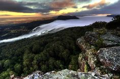Wattamolia Valley at sunrise, Barren Grounds Nature Reserve, NSW # Andy Hutchinson