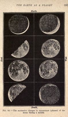 I would love a poster sized print of this please. The phases of the Moon. Laboratory lessons in general astronomie nemfrog Photo Wall Collage, Picture Wall, Collage Art, Room Posters, Poster Wall, Aesthetic Art, Aesthetic Pictures, Aesthetic Drawing, Photowall Ideas