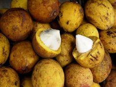 Os 10 Benefícios do Suco de Bacuri Para Saúde #suco #bacuri #sucodebacuri #beneficiosdosucodebacuri