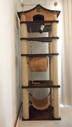 Dicas do Gilson Eletricista: Contos do Gilson Eletricista: O pequeno arranhador. Cat Tree Plans, Cat Climber, Cat Gym, Diy Cat Tree, Cat Perch, Cat Towers, Cat Stands, Cat Scratching Post, Cat Enclosure
