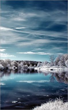 Infrared Photography by shin-ex