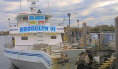 New York Striped Bass and Blues Fishing Trip – Brooklyn Fishing Charters, NYC, NY