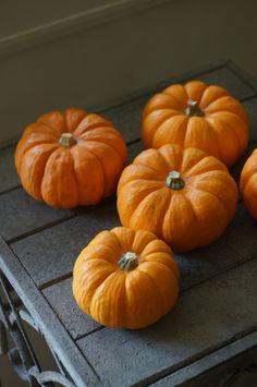 pumpkin Jack Be Quick