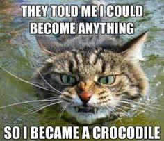 Become a Crocodile