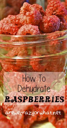 Step by step directions for dehydrating raspberries to put in your food storage or just to make for a snack. #beselfreliant