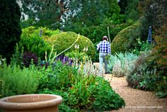 Famous garden designer and author John Brookes in his garden: Denmans.  You can get personal tuition in garden design from John via his online courses held every four weeks.  http://www.my-garden-school.com/course/garden-design-with-john-brookes/
