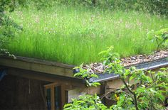 Green Roofs - Fully Grown Roof Packs in Sedum, Wildlfower and Slimline. Fully Grown Roof Packs provide an instant green roof option for all types of roofs. Green Roofing is becoming extremely popular due to its many benefits. Sedum Roof, Roof Architecture, Sustainable Architecture, Residential Architecture, Contemporary Architecture, Green Roof System, Living Roofs, Living Walls, Roofing Options