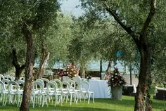 Heiraten in der Toskana, zwischen Olivenhainen und Weinbergen  www.talento-italia.com Exactly Like You, Group Of Friends, Dreaming Of You, Wedding Reception, Romantic, Plants, Italia, Vine Yard, Tuscany