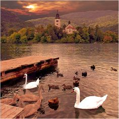 """Slovenia...saw a House Hunters International here and thought it was so beautiful. Also its apparently a """"central"""" location as far as Europe goes"""
