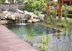 FAQ -> Welcher Unterschied besteht zwischen Schwimmteich und Öko-Pool? [auch Bioschwimmbecken, Bio-Pool]