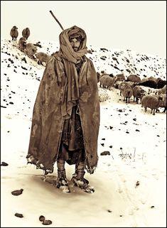 Shepherd | Photograph | Tribal | Layering |