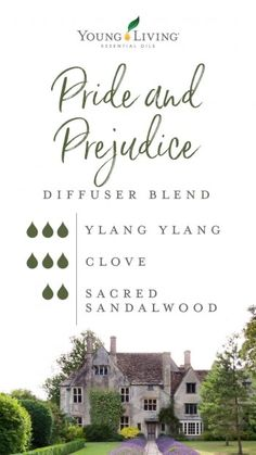 Yl Essential Oils, Essential Oil Diffuser Blends, Young Living Essential Oils, Aromatherapy Oils, Aromatherapy Recipes, Young Living Oils, Doterra, Diffuser Recipes, Pride