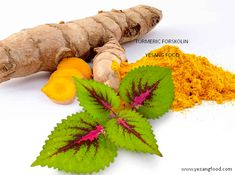 Turmeric forskolin is considered as world's one of the best weight loss duo. Forskolin basically is an active compound found in Coleus Forskohlii. Tropical Plants, Best Weight Loss, Botany, Caffeine, Turmeric, Health Benefits, Fat Burning, Natural Remedies, Mint