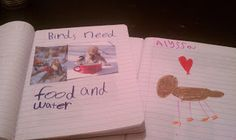 3 Cheers for Animals ideas. I love the notebooks. What a great way for the girls to record everything they learn along the journey.