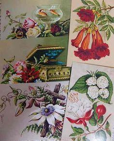 Postcard 即決ハンドメイドアンティーク風タグしおり花柄5枚No212 インテリア 雑貨 Handmade ¥180yen 〆05月20日