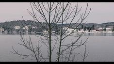 REFLEXION | Moza Air | Canon 5D Mark IV | 4K Adobe Premiere Pro, Canon 5d Mark Iv, Air, Outdoor, Outdoors, Outdoor Living, Garden
