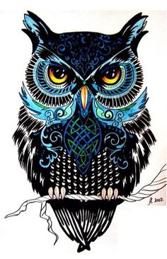 ideas for drawing tattoo owl illustrations Owl Tattoo Drawings, Art Drawings, Drawing Owls, Owl Tattoos, Buho Tattoo, Owl Artwork, Owl Tattoo Design, Owl Pictures, Beautiful Owl
