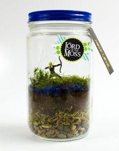 Legolas Moss Terrarium // Lord of the Moss by MossLoveTerrariums, $25.00