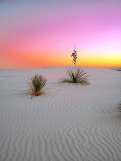 Sunrise in White Sands National Monument (Photo: kds4850/Flickr)