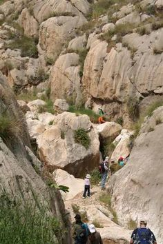 Wadi Firan