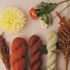 https://i.pinimg.com/236x/78/d8/be/78d8bef7bc44cff359859fb0e7b5f206--hello-autumn-yarn-shop.jpg