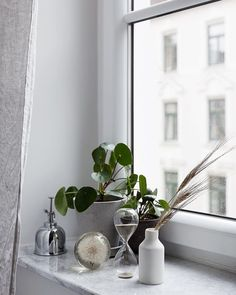 Random window things carefully combined with very dirty windows spring cleaning is clearly overdue Decor, Beautiful Flooring, Window Sill Decor, Windows, Window Decor, Window Sill, Master Decor, Angled Ceilings, Bedroom Windows