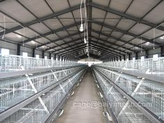 High density raising save land about than cage-free The unique door design, effectively prevent food wasting when head shake up and down It can be used for chick if plus plastic mesh. Broiler cage and Broiler chicken cage for sale in poultry farm.