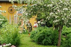 Visit the gardens in Kristinestad! Visitors to Kristinestad often wish that they could take a look at the idyllic wooden house environment from the inside. Wooden House, Finland, Gates, Environment, Houses, Outdoor Structures, Interiors, Nature, Plants