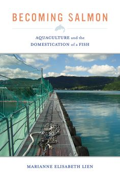 Availability: http://130.157.138.11/record=b3893518~S13 Becoming Salmon: Aquaculture and the Domestication of a Fish / Marianne Elisabeth Lien. The first ethnographic account of salmon aquaculture, the most recent turn in the human history of animal domestication.