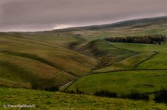 Verden Green English Moors   | Flickr - Photo Sharing!