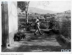 Józef Piłsudski na Maderze, 1931.  http://audiovis.nac.gov.pl/obraz/12154/aca03fa3bc138325df576f62eccc5092/