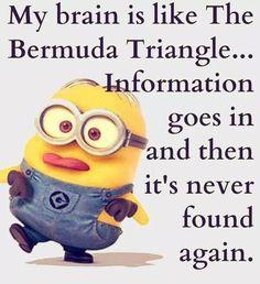 my brain is like the bermuda triangle