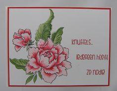 Stempel: Peony Bouquet van Altenew