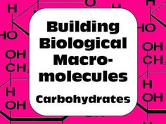 Hands-on activity for senior biology students. Building carbohydrate molecules with guided study questions. Great for interactive notebooks.