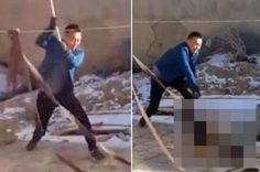 Chinese man hits dog with a shovel as onlookers laugh! Act now to name and shame this man! | YouSignAnimals.org