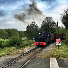 Vous avez toujours rêvé de monter à bord du Poudlard Express? Le chemin de fer de la baie de Somme est fait pour vous.
