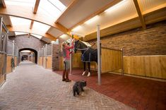 Anky's stables, the Netherlands. Wash/grooming stall and internal horse stables in a large, airy barn.