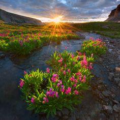 Porphyry Basin near Ouray, Colorado