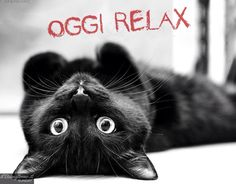 ❤️Relax Today❤️