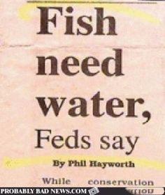16 Funny and Strange Headlines
