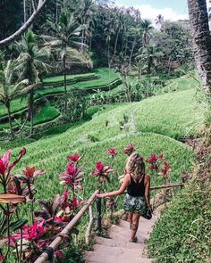 Where's the first place you are dreaming of visiting when the world opens up? Bali is always top on our list! 🌴  Get some travel inspo over on Marcella's page! Best Of Bali, Rice Terraces, Ubud, Island Life, Around The Worlds, Bible, Explore, Photo And Video, Wanderlust
