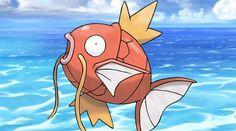 I love EVERYTHING about this. 😂😂😂 #pokemon #pokemongo #pokemoncommunity #shinypokemon