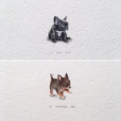 German shepherds are one of the most constant canine breeds to make the American Kennel Club's yearly list of the most popular pet dogs. #bulldogs French Bulldog Drawing, French Bulldog Tattoo, Bulldogge Tattoo, Puppy Tattoo, Chihuahua Tattoo, Chihuahua Puppies, Bulldog Puppies, Chihuahua Drawing, Bulldog Francés
