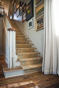 Blue and Gold Wool Stair Runner - Cottage - Entrance/foyer Carpet Staircase, Staircase Runner, Modern Staircase, Staircase Design, Stair Runners, Spiral Staircases, Staircase Diy, Narrow Hallway Decorating, Foyer Decorating