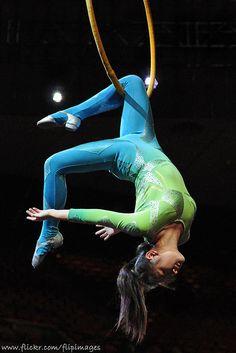 Lyra performer at Ringling Brothers
