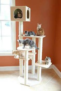 Having a wooden cat tree for your kitty is a big step up the quality ladder over the pressed wood and PVC cat furniture that's out there. It's more of an expense, but the higher cost is offset by better quality and the ability to outlast the cheaper kitty condos. Here are the top 5 wood cat towers we've found.