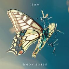 ISAM - AMON TOBIN