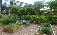 Edibile garden. Fairchild Tropical Botanic Garden