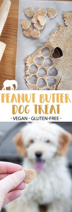 With only 4 ingredients you can make tasty little treats for your furry friend! Dogs love these Peanut Butter Dog Treats! They are vegan and glutenfree. Dog Cake Recipes, Dog Biscuit Recipes, Dog Treat Recipes, Healthy Dog Treats, Dog Food Recipes, Homemade Dog Cookies, Homemade Dog Food, Vegan Dog Food, Grain Free Dog Food