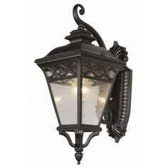 TransGlobe Lighting Outdoor 1 Light Wall Lantern & Reviews | Wayfair